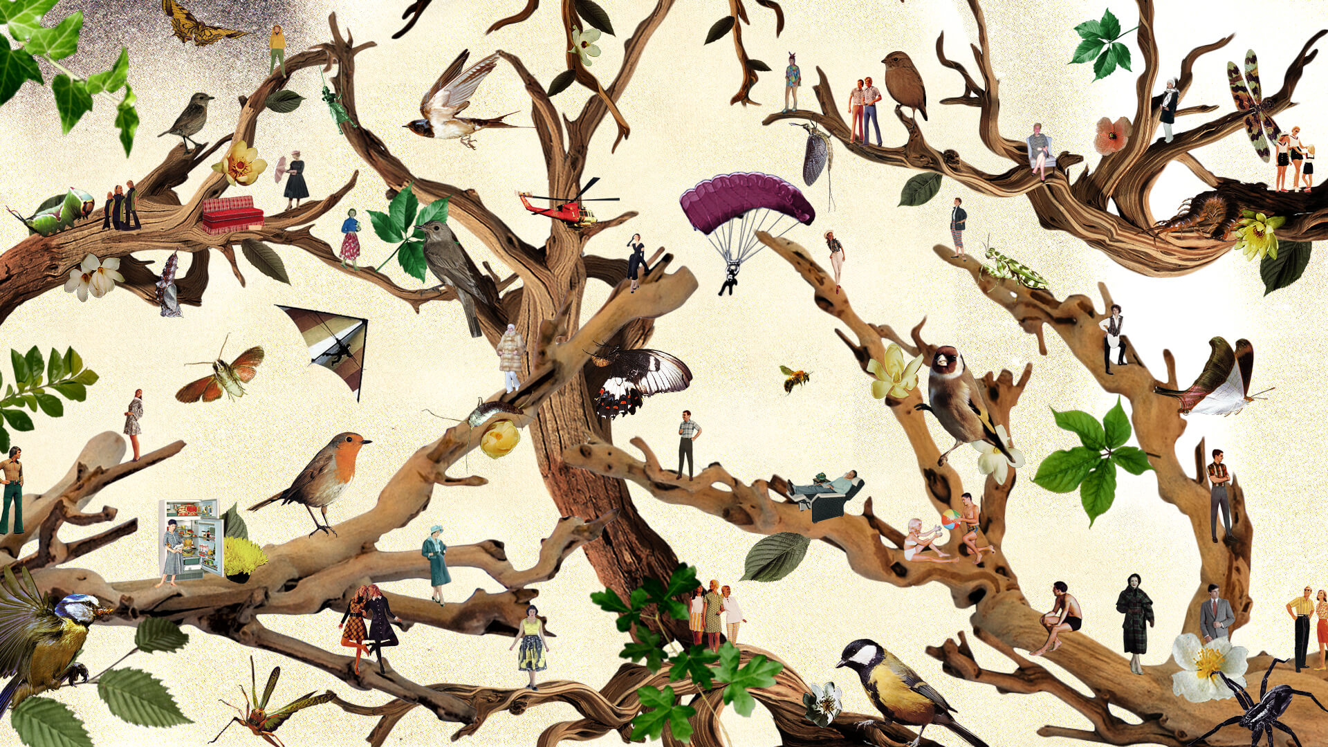 tree branches covered in birds, insects and people